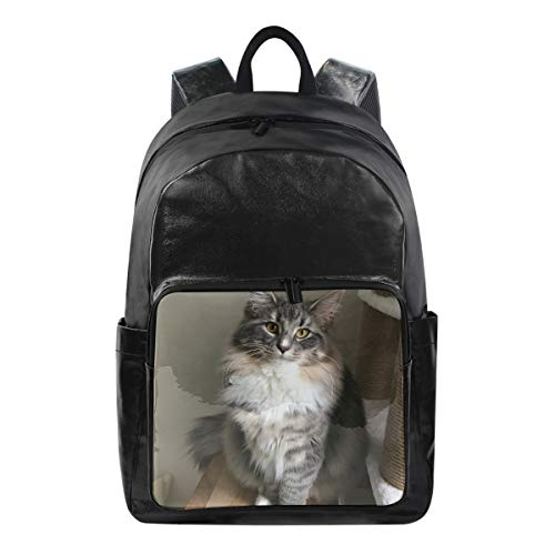 Canvas Backpack Laptop School Hiking Travel Bag for Women Men Lightweight Norwegian Forest Kitten