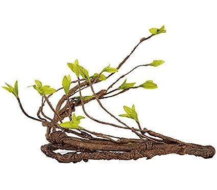 AIICIOO Jungle Vine Decoración de Terrario//Vivarium para Chamaeleo ...