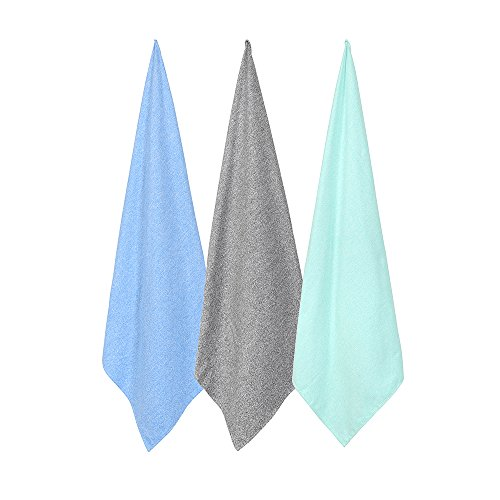 CAREWORX Microfiber Towel
