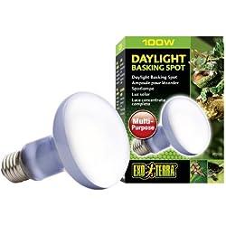 Exo Terra Sun-Glo Basking Spot Lamp, 100-Watt/120-Volt