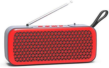 VLERHH Radio Portatil, Con Radio FM (Bluetooth, Micrófono ...