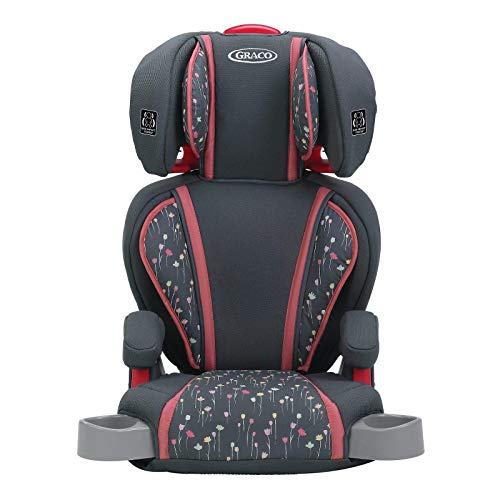 Graco Highback TurboBooster Height Adjustable Car Seat for 30-100 Pounds, Alma (2 Pack)