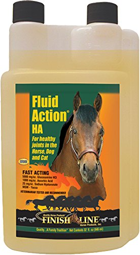 FINISH LINE Fluid Action Joint Therapy 32 Ounce ()