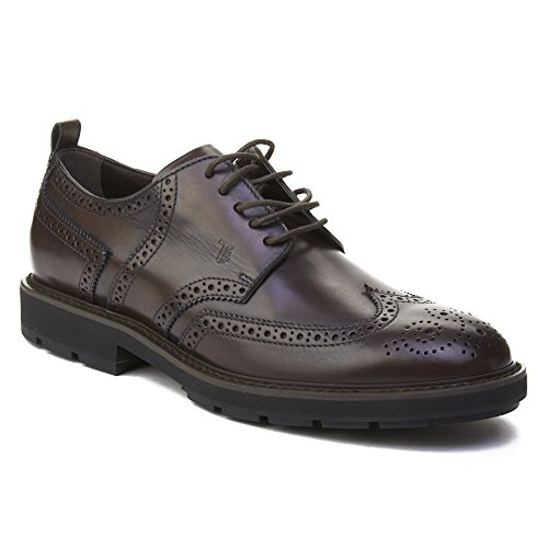 Tods Mens Leather Brogue Oxford Shoes Brown XY8fW