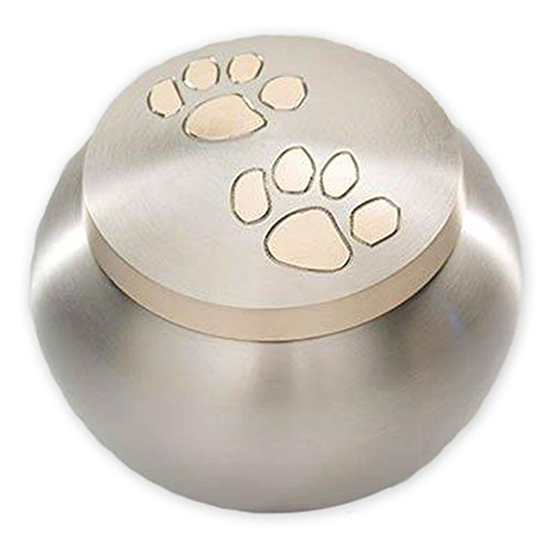 (Beautiful Life Urns Pawsitively Cherished Pet Urn - Unique Cremation Urns for Pets, Medium, Pewter/Gold)