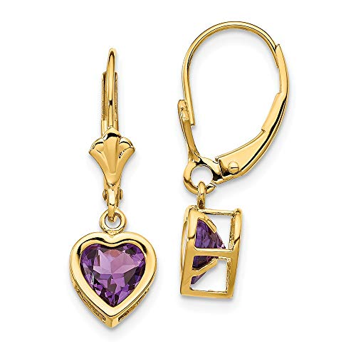 FB Jewels Solid 14K Yellow Gold 6mm Heart Amethyst Earrings