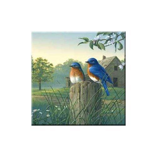 McGowan TT92386 Tuftop Country Morning Bluebirds Trivet McGowan Mfg Co MCGRWN193