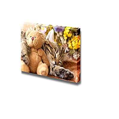 Canvas Prints Wall Art - Kitten/Kitty and Teddy Bear Cute Little Cat/Pet Photograph | Modern Wall Decor/Home Decoration Stretched Gallery Canvas Wrap Giclee Print & Ready to Hang - 32