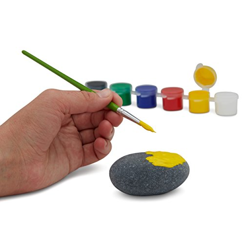 Deluxe Rock Painting Kit for Kids, Kindness Rock Painting Supplies Set, River Rock Arts and Crafts Projects for Girls…