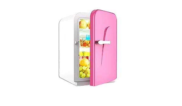 WJSWBX 16L Mini refrigerador para automóvil 12v 220v Hogar pequeño ...