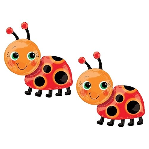 Set of 2 Miss Ladybug 28