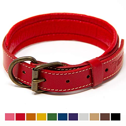 Logical Leather Padded Dog Collar - Best Full Grain Heavy Duty Genuine Leather Collar - Red - Medium