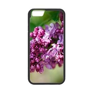 [Funny Series] IPhone 6 Plus Case Flower 253, Iphone 6plus Case Cute Okaycosama - Black