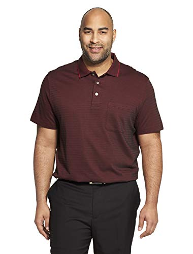 (Van Heusen Men's Big and Tall Flex Short Sleeve Stretch Stripe Polo Shirt, red Tibetan, 2X-Large)