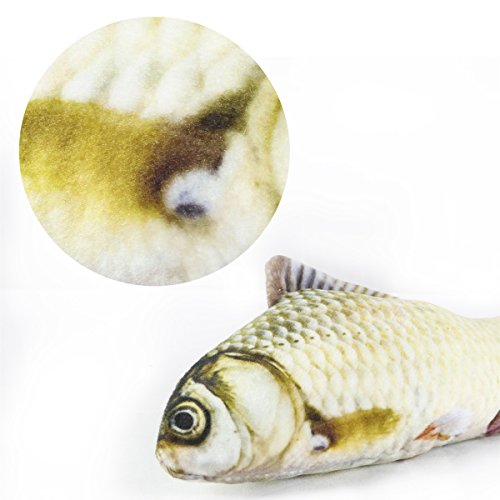 Babula 2 Piece Cat Toys, Catnip Simulation Plush Fish Toy, Grass Carp And Salmon