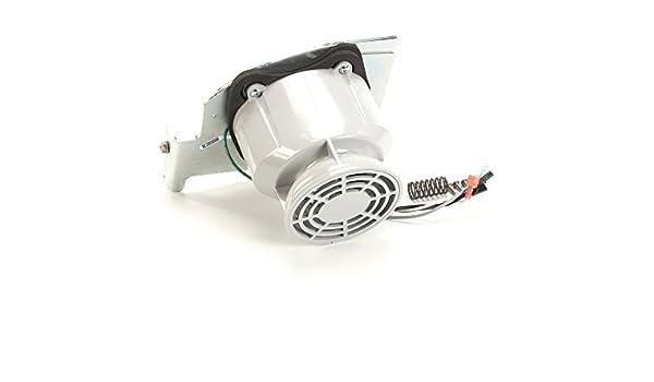 Delfield VMP00148 motor de licuadora con polea 120 V: Amazon.es ...