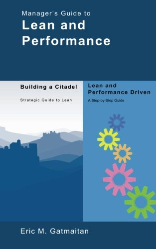 Manager's Guide to Lean and Performance ebook