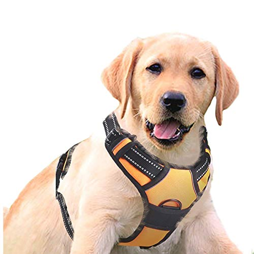 - RABBITGOO  Dog Harness No-Pull Pet Harness Adjustable Outdoor Pet Vest 3M Reflective Oxford Material Vest for Dogs Easy Control for Small Medium Large Dogs (Orange, S)