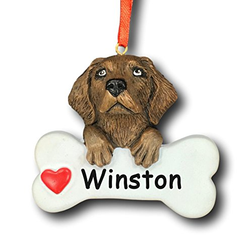 (Rudolph and Me Personalized Chocolate Labrador Retriever Dog Christmas Tree Ornament Gift for Pet Featuring Dog Bone with Red Heart Detail - Customized with Your Dog's)
