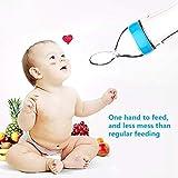 Baby Food Feeder, Fresh Food - 2 Pack Fruit Feeder