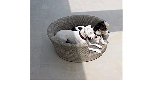 Amazon com : Vicreatwin Round Pet Cat Dog Cushion Bed PE