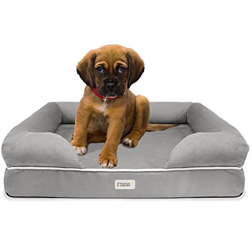 Friends Forever 100% Suede Small Dog Bed / Lounge, Prestige Edition (20