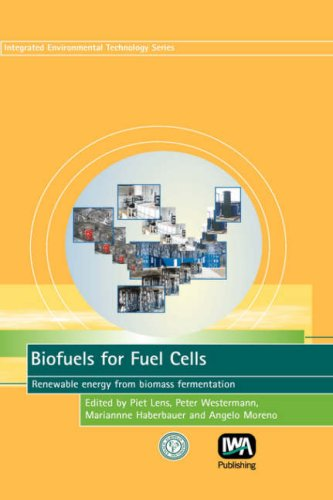 Biofuels for Fuel Cells (Integrated Environmental Technology)