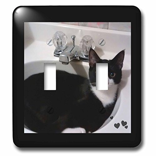 Charlyn Woodruff - CW Designs - Cat Photography - Cute Black White Tux Cat Curled up in Sink Photo - Light Switch Covers - double toggle switch (lsp_242428_2) by 3dRose