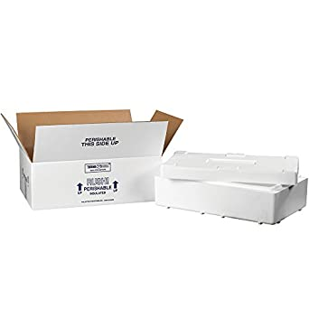 40f044c8d422 Amazon.com: Aviditi 260C Insulated Shipping Kits, 19-1/2