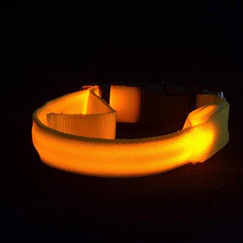 LUCKSTAR LED Dog Collar - [13-14.2'' / 33-36cm] X-Small Size Glowing Flashing Nylon Pet Collar - 3 Flashing Modes Luminous Safety Collar For Night Walking (Battery-powered)