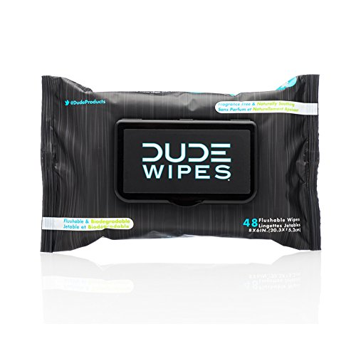 DUDE Wipes Flushable Wet Wipes, Unscented with Vitamin-E & Aloe, 100% Biodegradable, Dispenser (1 Pack, 48ct)