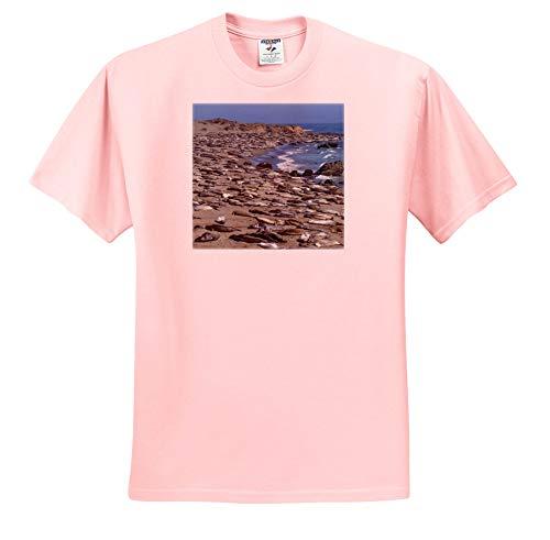 3dRose Danita Delimont - Seals - Elephant Seals on Beach, San Simeon, California - Light Pink Infant Lap-Shoulder Tee (12M) ()