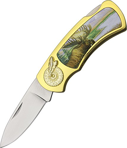 Szco Supplies Moose Tin Gift Box Knife