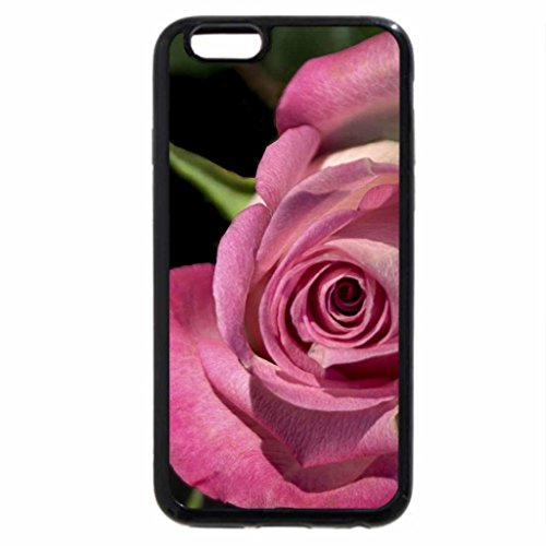 iPhone 6S / iPhone 6 Case (Black) Rose