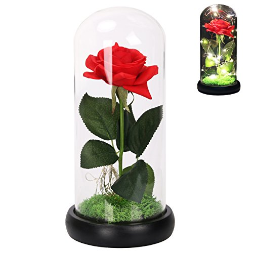 Langxun Red Silk Rose and LED Light that Lasts Forever in Glass Dome Inspired and the Wooden Black Base Covered with Real Moss for Home Decor Wedding Decorations and Gifts for Women (LED Red Rose)