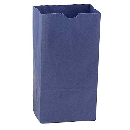 Colored Lunch Bags Paper - 8
