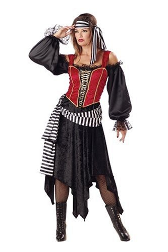 Pirate Lady - Premier Collection by InCharacter - Adult Costume - Size Small - Adult Premier Pirate Costumes