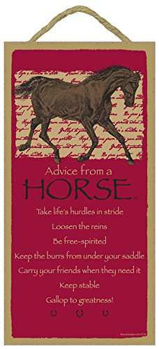 SJT ENTERPRISES, INC. Advice from a Horse - 5