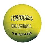 Spectrum Volleyball Trainer, Yellow - Regular Size