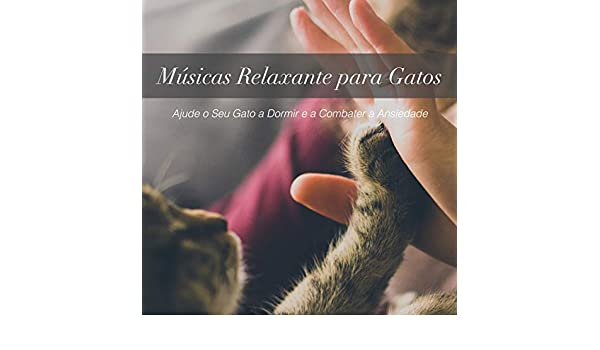 Músicas Relaxante para Gatos: Ajude o Seu Gato a Dormir e a Combater a Ansiedade by Cat Music Dreams, and Pet Music Therapy RelaxMyCat on Amazon Music ...