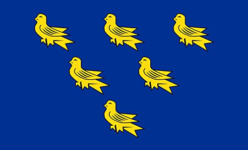 magFlags Large Flag Sussex county flag showing the arms of Sussex Six gold martlets on a Blue field | landscape flag | 1.35m² | 14.5sqft | 90x150cm | 3x5ft -- 100% Made in Germany -- long las (Sussex Large Bracket)
