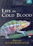 Life In Cold Blood (Movie, DVD)
