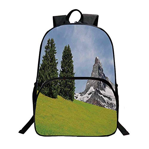 (Farmhouse Decor Fashionable Backpack,View of Mountain Matterhorn in Peaceful Summer with Sun Rays Meadow Print for Boys,11.8