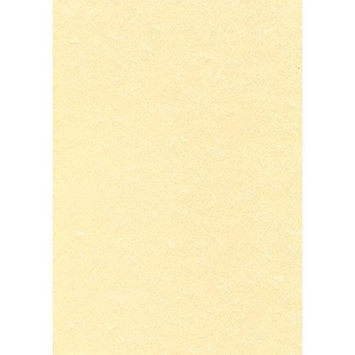 Decadry PCL1677 Carta Pergamenata, Fogli, A4, 165 G, Confezione da 50 Apli 697304