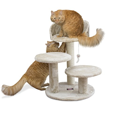 Majestic Pet Products 27 inch Beige Casita Cat Furniture Condo House Scratcher Multi Level Pet Activity Tree