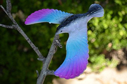 Balancing Bird Toy 6.5 Inch Wing Span-Colors May Vary By C&H Solutions