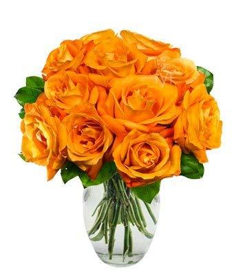 - Flowers - One Dozen Orange Roses (Free Vase Included)