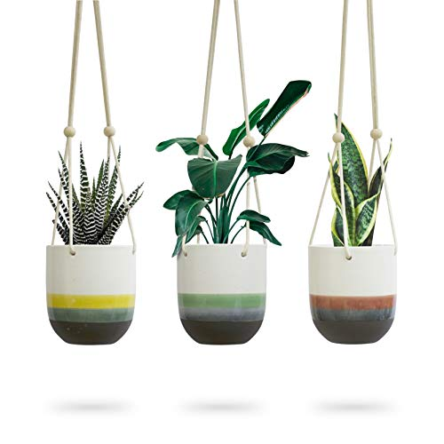 3pk Ceramic Hanging Planter for Indoor Plants, Colorful Round Pots, Air Succulent Holder Container, Cactus Pot with Cotton Rope Hanger, Outdoor Decor, 23 Bees (3, Natures Sunrise)