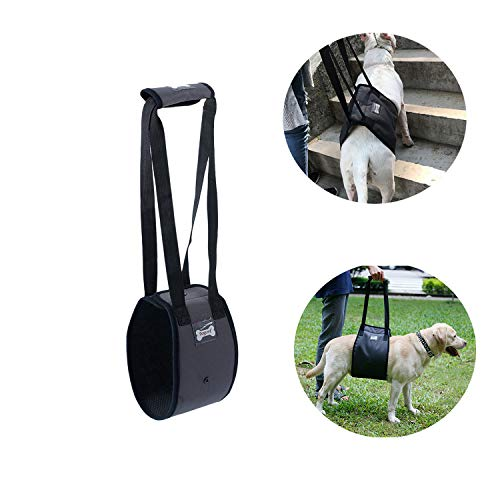 Tineer Dog Lift Harness Support Sling for Elderly or Disabled Dogs – Support Harness Rear Help Weak Legs Stand Up, Walk…