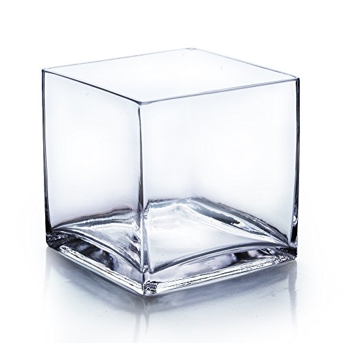 CYS® Glass Cube Vase. H-6